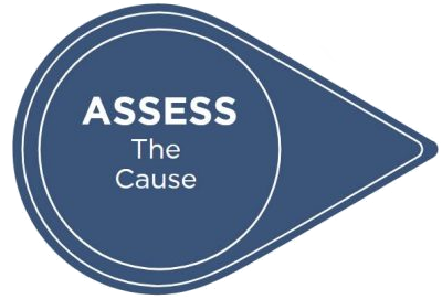 ASSESS The Cause